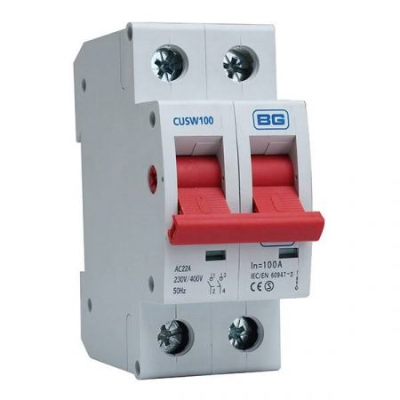 BG Main Switch DP 100A Isolator | CUSW100
